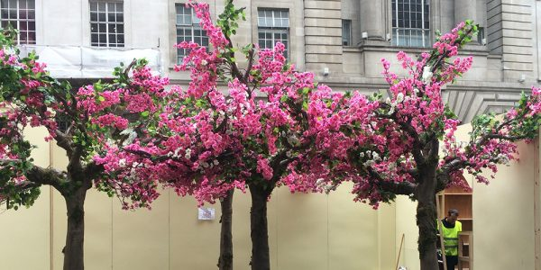 The Pink Garden on Regent street