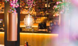 Wagamama blossom on lights event trees decor